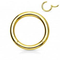 Piercing anneau 8 x 1,2mm à segment doré Duk