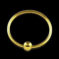 Piercing anneau 10mm plaqué or Paya NEZ024