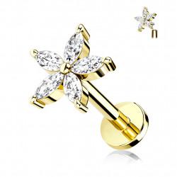 Piercing labret 6mm doré avec une fleur et cinq pétales Ciruk Piercing labret4,55€